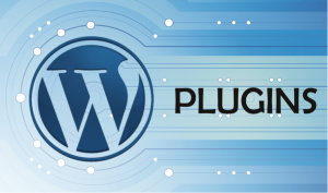 Plugins for WordPress: good, nice and cheap