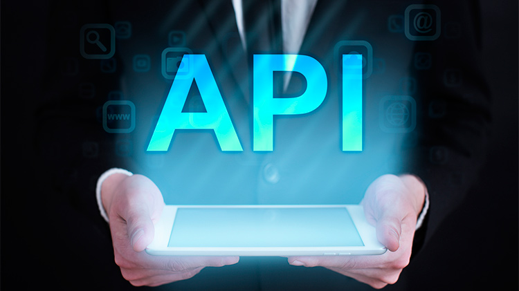 REST API: What is it, and what are its advantages in project development?