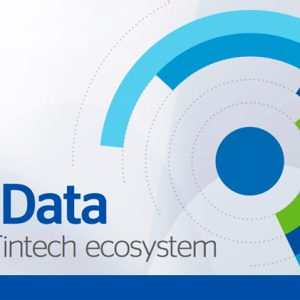 Ebook: Big Data in 'fintech' ecosystem